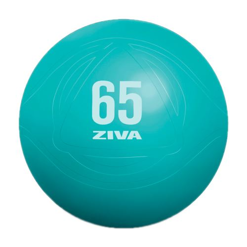 ZIVA gymnastický míč 75 cm
