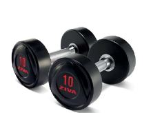SL Solid Steel Virgin Rubber Dumbbell 45 kg -R/R
